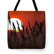 Beach Grass At Sunset Tote Bag