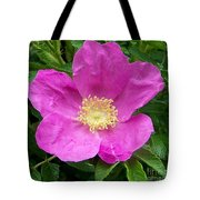 Pink Beach Rose Fully In Bloom Tote Bag