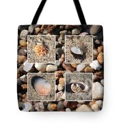 Beach Shells And Rocks Collage Tote Bag