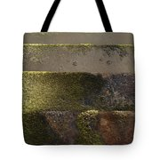Beach Steps 1 Tote Bag