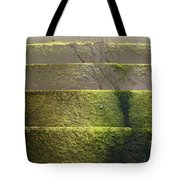 Beach Steps 2 Tote Bag