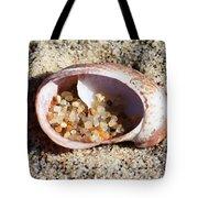 Beach Treasure Tote Bag by Carol Groenen