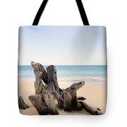 Beach Trunk Tote Bag