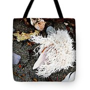 Beach Wares - Shells - Feather Tote Bag