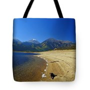 Beach With Altitude Tote Bag
