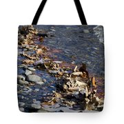 Beach With Stones Tote Bag