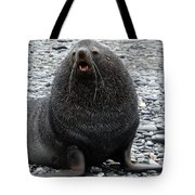 Beachmaster Tote Bag by Ginny Barklow