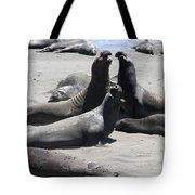Beachmasters - Elephant Seals Tote Bag