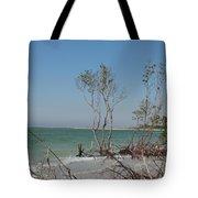 Fort De Soto Beachview Tote Bag