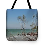 Fort De Soto Beachview Tote Bag