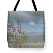 Beachview With Seaoat  Tote Bag