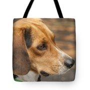 Beagle Loyalty Tote Bag