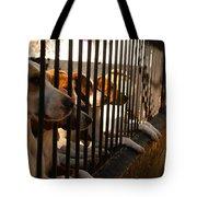 Beagles At Stowe Two Tote Bag