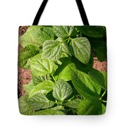 Beans In A Row Tote Bag