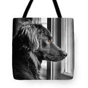 Bear At Window Tote Bag