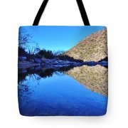 Bear Canyon Pool Tote Bag