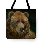 Bear In The Pool Tote Bag