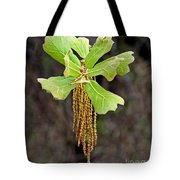 Bearded Oak Tote Bag