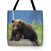 Bearly Posing Tote Bag