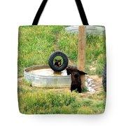Bears At Play Tote Bag