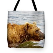 Bear's Eye View Of Swimming Grizzly In Moraine River In Katmai Tote Bag