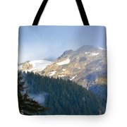 Bears With A View Tote Bag