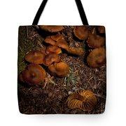 Beartooth Mountain Mushrooms   #3661 Tote Bag