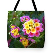 Beaucoup Of Blooms Tote Bag