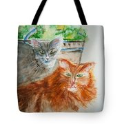Beauregard And Stonewall Tote Bag