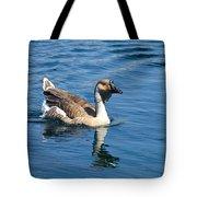 Beautiful African Brown Goose Tote Bag