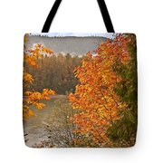 Beautiful Autumn Gold Art Prints Tote Bag