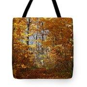 Beautiful Autumn Sanctuary Tote Bag