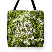 Beautiful Azure Bluets Appalachian Trail Tote Bag