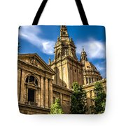 Beautiful Barcelona  Tote Bag