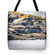 Seals And Rock Scupltures Tote Bag