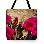 Beautiful Beavertail Cactus Tote Bag