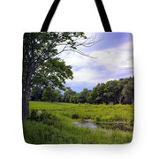 Beautiful Bethel Tote Bag