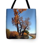 Beautiful Bishop Canal Tote Bag