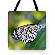 Beautiful Black N White Rice Paper Butterfly Tote Bag