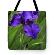 Beautiful Purple Iris Flower Art Tote Bag