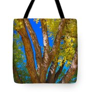 Beautiful Blue Sky Autumn Day Tote Bag