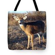 Beautiful Buck Tote Bag