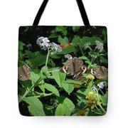 Beautiful Buckeyes Tote Bag