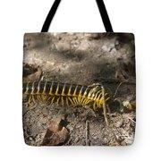 Beautiful Bug Tote Bag
