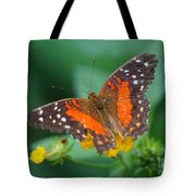 Red Anartia Butterfly 1 Tote Bag