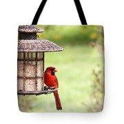 Beautiful Cardinal Tote Bag