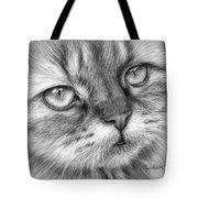 Beautiful Cat Tote Bag by Olga Shvartsur