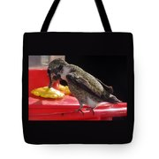 Beautiful Colored Hummingbird Tote Bag