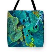 Beautiful Coral  Tote Bag