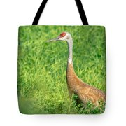Beautiful Crane Tote Bag